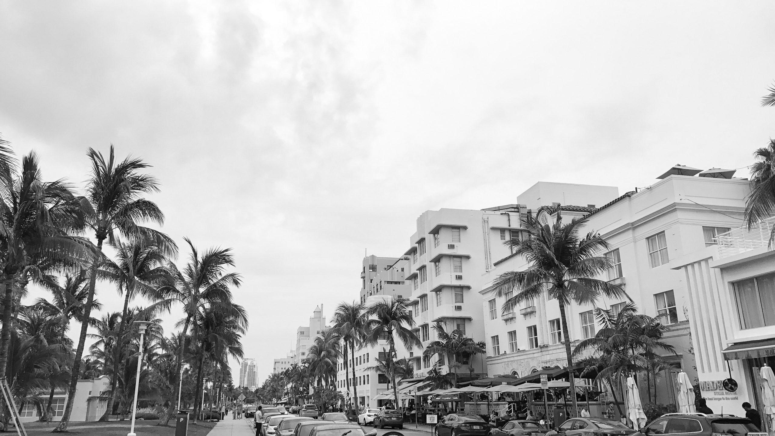 IMG 4025 scaled - Miami Beach ve Hayatın Tadına Varmanın 7 Farklı Yolu